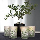 BOTANICAL GARDEN VOTIVE CANDLE HOLDERS